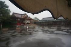 高橋さん。歴史ある神社の社殿と現代の白テントの対比が印象的です。手前のテントにピントを合わせ、奥の社殿をぼかした点もポイントに。