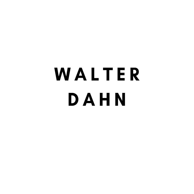 Künstler: Walter Dahn