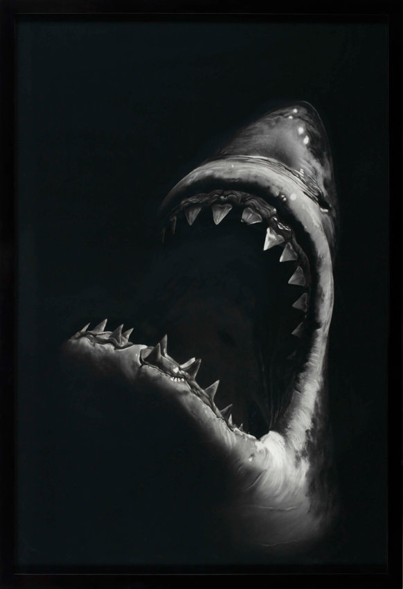 Robert Longo, Shark 7, 2008, Kohle auf Papier, 234 x 151 cm