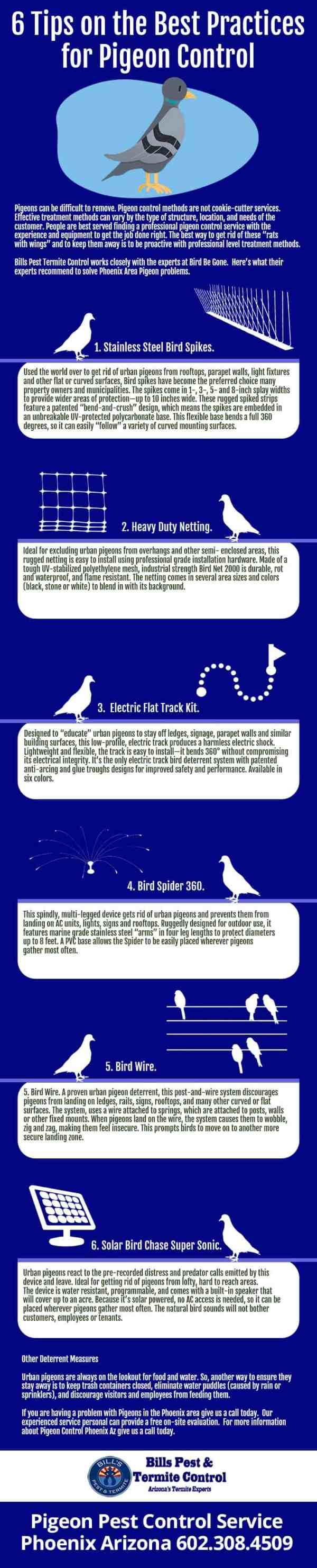 infographic-194-penguin-control