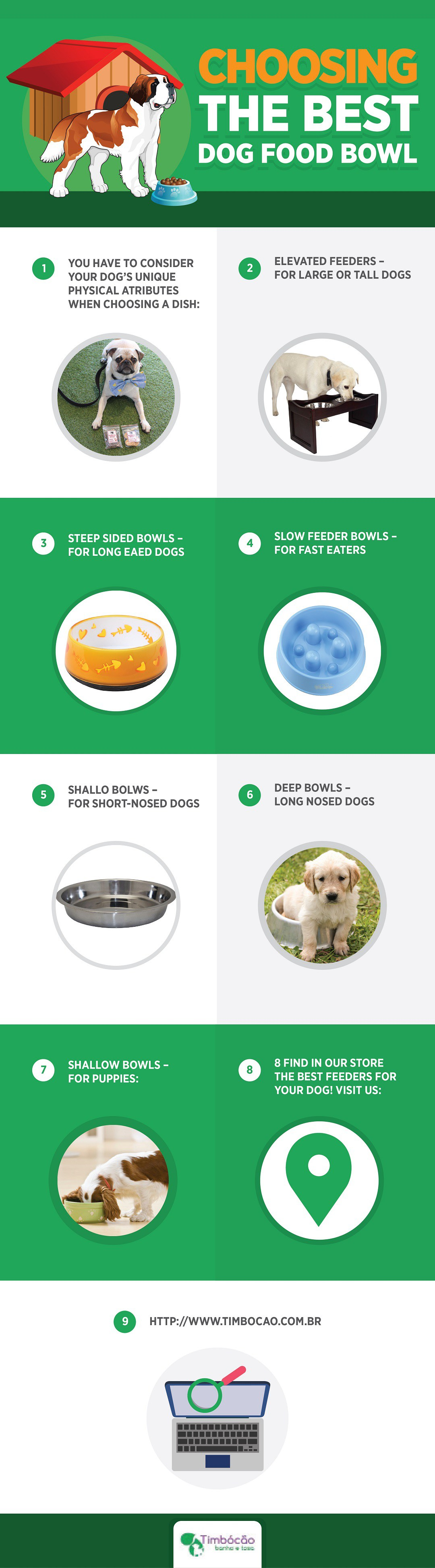 Choosing the Best Dog Food Bowl