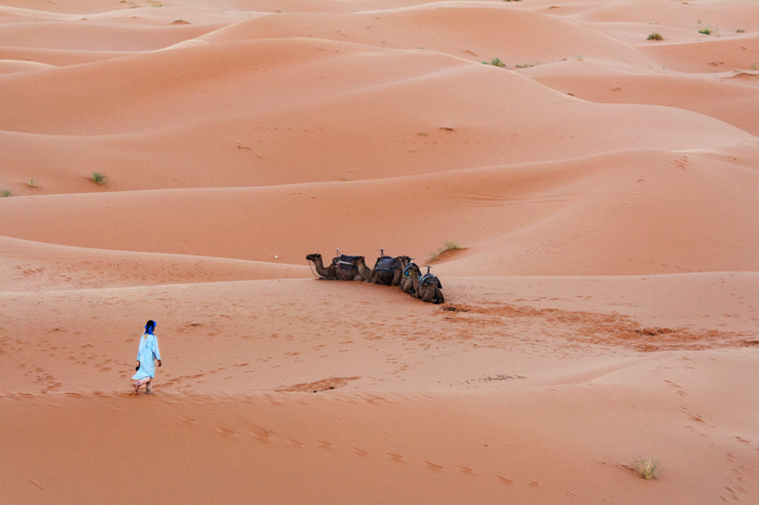 In The Sahara 1