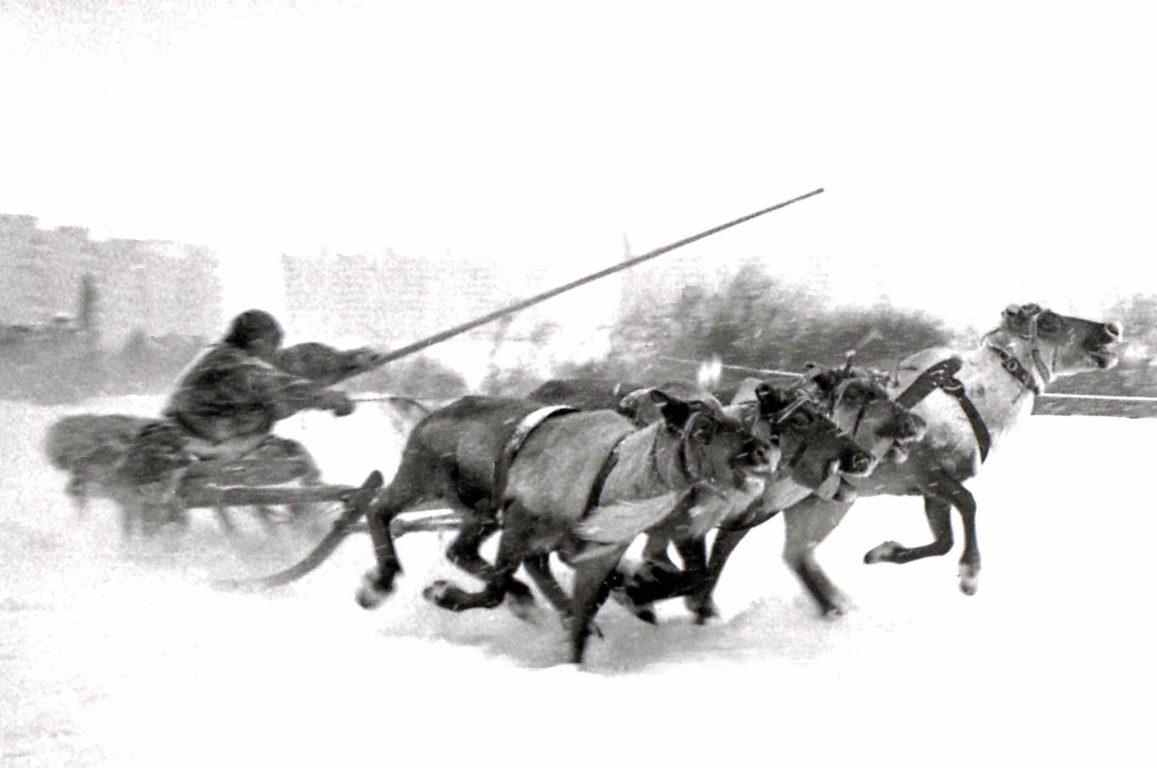 Saami herdsman 1976 _alternative scan