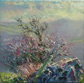 Winter Hawthorn, Wetton 12x12-3