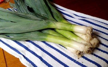 leeks on towel