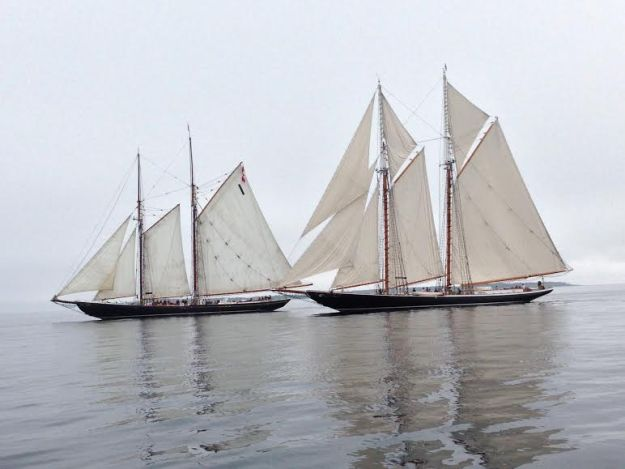 Bluenose and Columbia