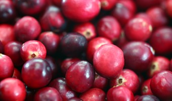 Food For Thought: Cranberries – the North American Fruit