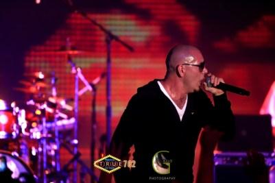 AGP-Pitbull---010