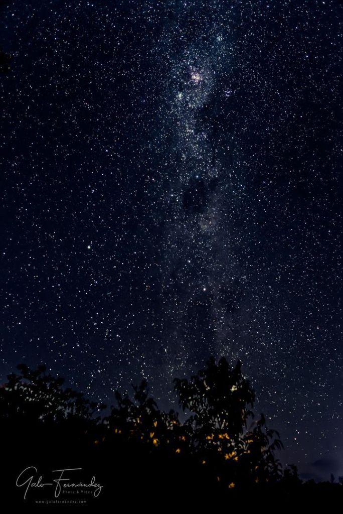 Noche Estrellada sobre la Llanura Pampeana - PBA