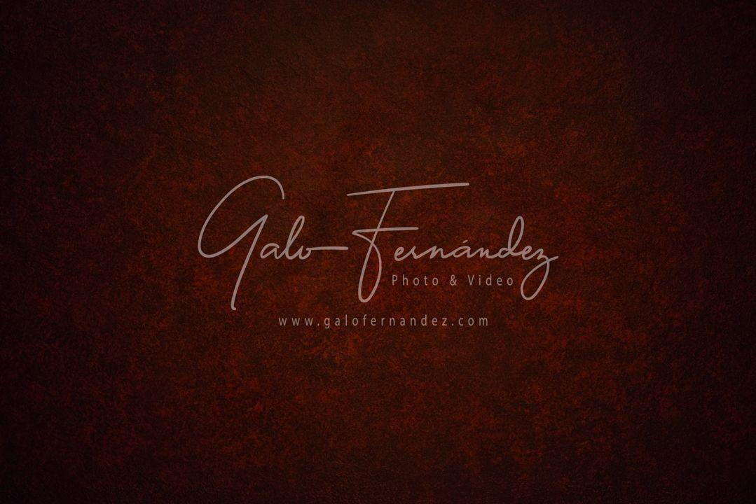Hermoso fondo vintage simil cuero en tonos marrones, rojos y guinda con relieve, textura manchada y espacio para texto o imagen