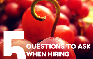 5 questions to ask when hiring a web designer
