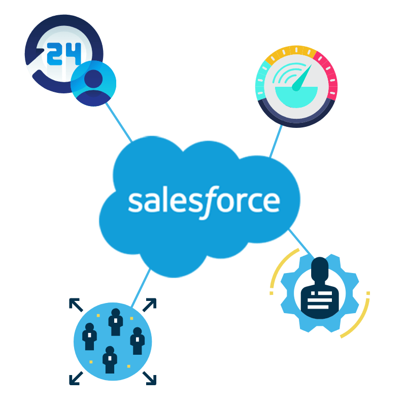 Salesforce Capacity Planning and Utilization