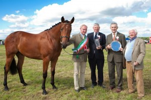 Galway Co. Show, winners