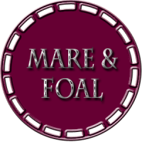 Mare & Foal Classes