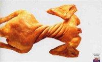Scott-Chicken
