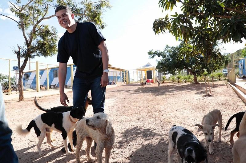 Agora é Lei! Banco Público de Ração e Utensílios vai arrecadar doações para animais resgatados