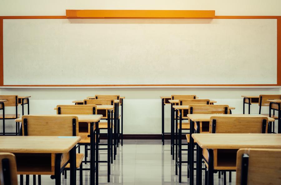 Ano letivo de 2021 do ensino básico poderá ser concluído em 2022, define CNE