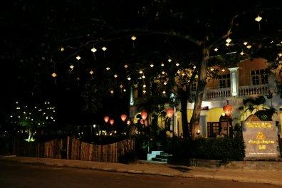 Lampions in den Bäumen