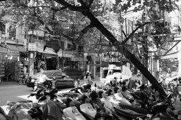 Vogelkäfige und Mopeds. Hanoi in a nutshell.