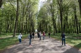 Instagramer im Schlosspark