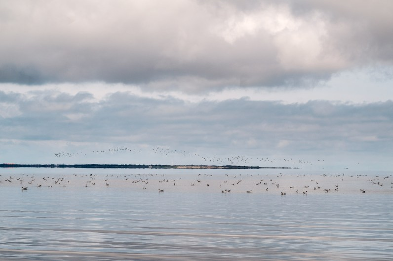 Küste in Ostrfiesland