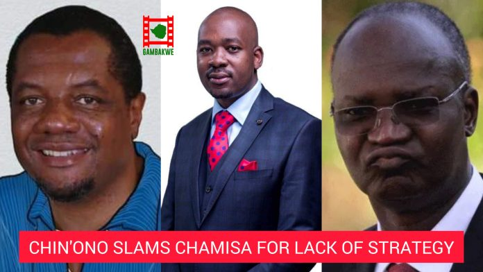 Hopewell Chin'ono slams Chamisa again for lack of strategy