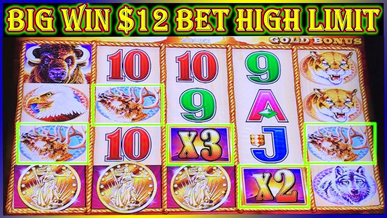 big win 12 bet high limit buffalo gold slot machine pokies izmirmasajfo