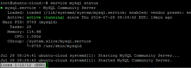 mysql status