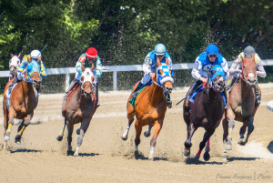 Horse Race Betting Online is Legal in Most US States