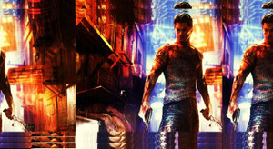 Sleeping_dogs1