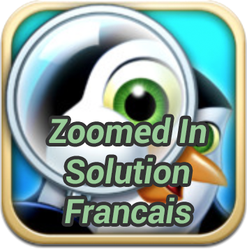 Zoomed In Solution Français 2