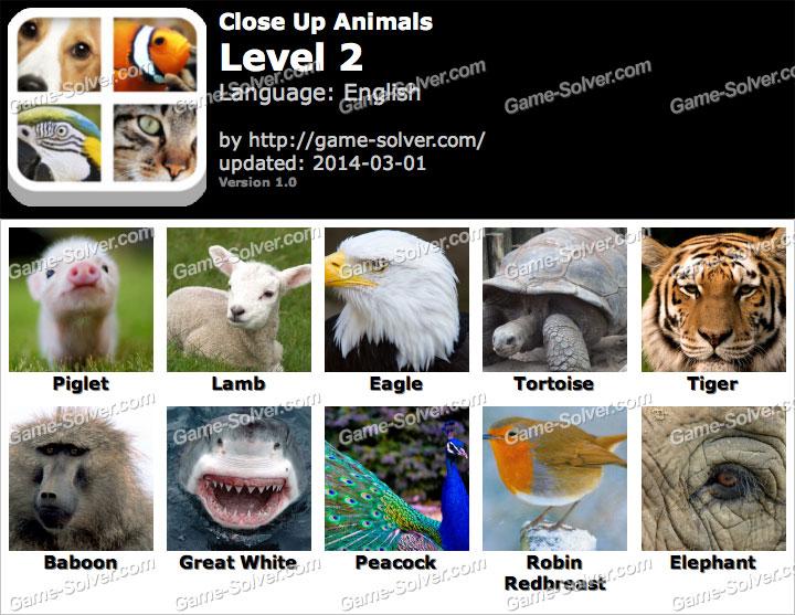 Close Up Animals Level 2