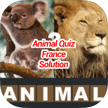 Animal Quiz France Solution