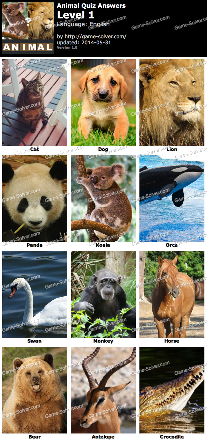 Animal Quiz Level 1
