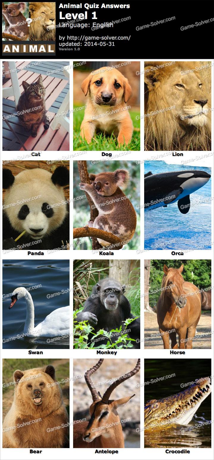 Animal Quiz Level 1