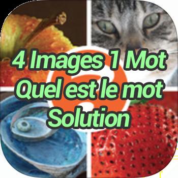 4 Images 1 Mot Quel est le mot Solution
