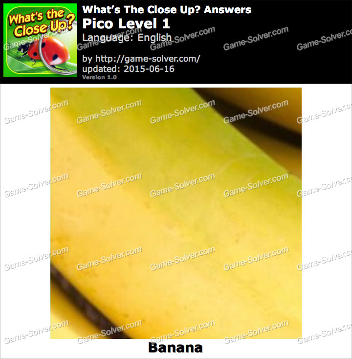 What's the Close Up Pico Level 1