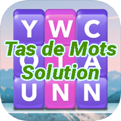 Tas de Mots Solution