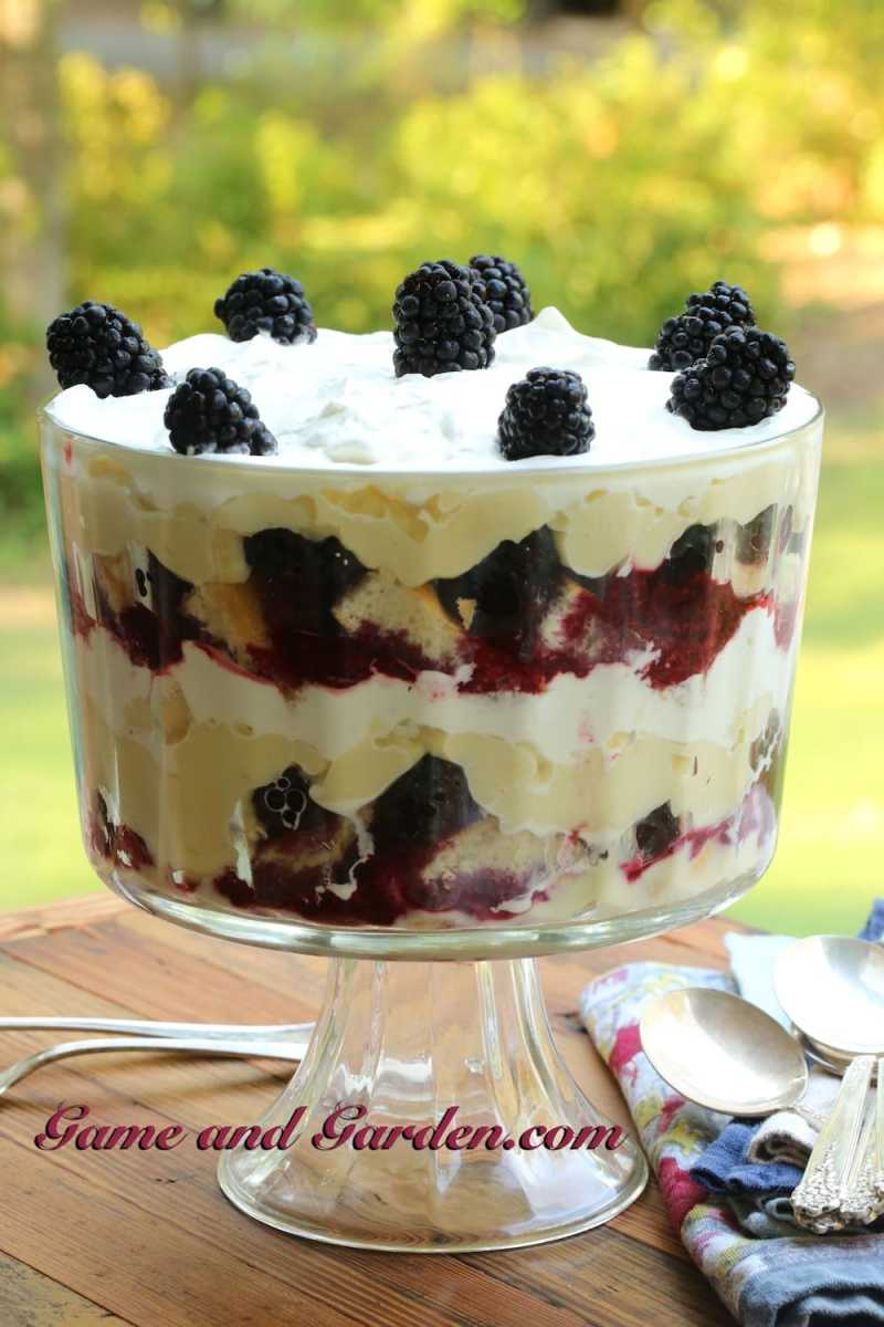 Blackberry Trifle with Luscious Custard Filling