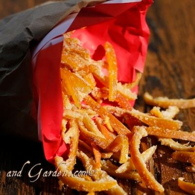 Candied Orange Peel – An Example in Sustainability