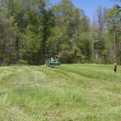hunting & land management