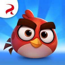 Скачать Angry Birds Casual на Android iOS