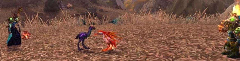 WoW Pet Battle Best Birds