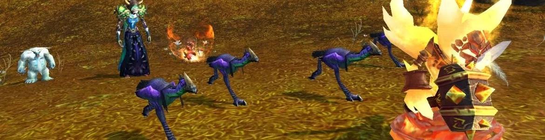 WoW Pet Battle Best Hatchling