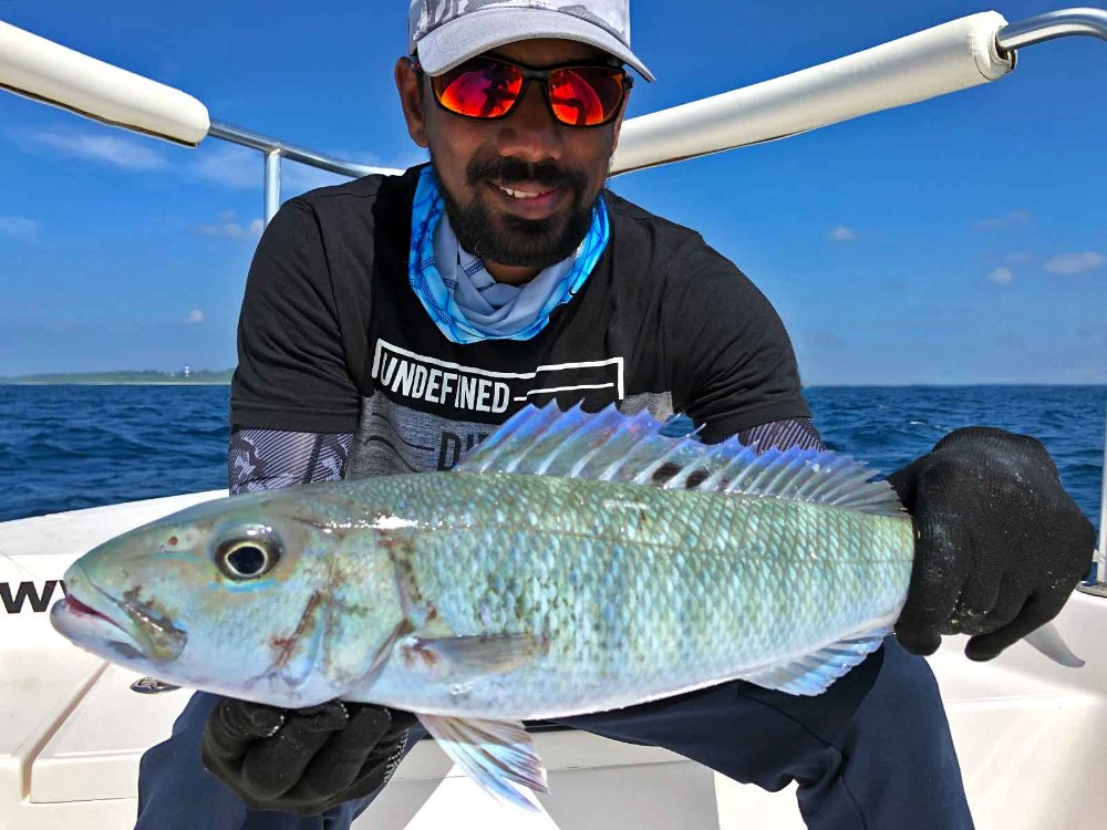 job-fish_jigging_andaman_carpenter-85-36-rod_daiwa-saltiga-gt-6000-reel_ravi