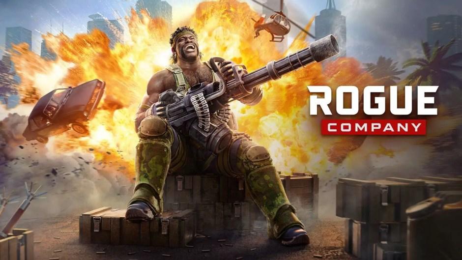 Cannon Rogue Company