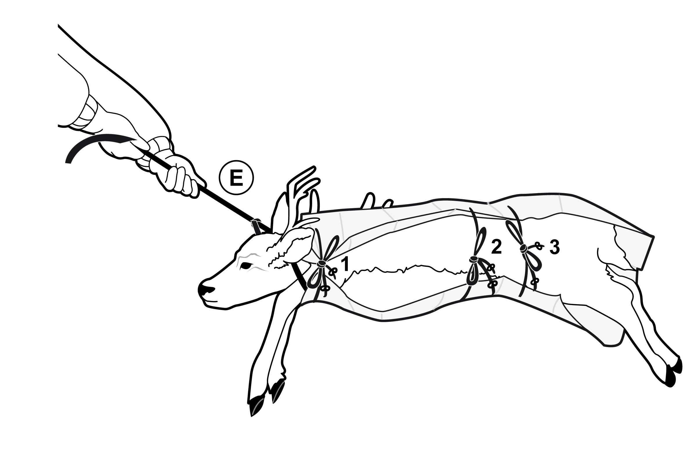 Game Glide Drag Deer Hog Hunting Great And Easy Sled