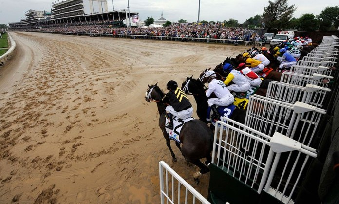 14 races scheduled on Derby Day