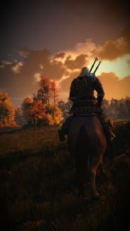 the-witcher-5