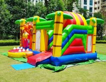 bouncy castle with slide rental